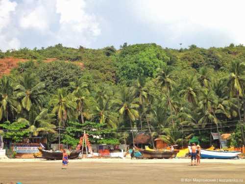арамболь индия, северный гоа: как добраться, описание пляжа, жилье, цены